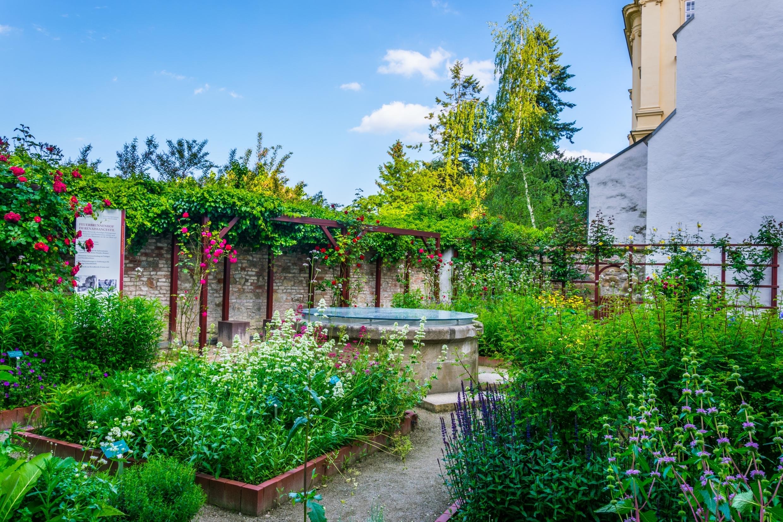 Qm jardin medicinal gell fr res for Jardin jardin 2017